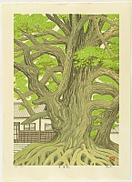 Takehisa Imai 1940 - - Shourenin Temple