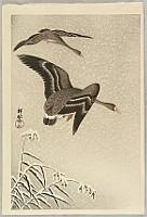 Geese in Snow Falling Sky