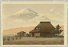 Mt. Fuji from Narusawa