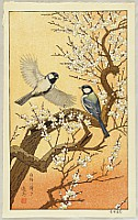Birds of the Seasons - Spring