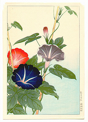 Hodo Nishimura active 1930s - Morning Glories
