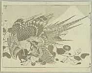 100 View of Mt.Fuji - Fugaku Hyakkei Vol. 2 - Eagle in the Dream