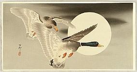 Two Mallard Ducks and the Moon