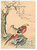 Hobun Kikuchi 1862-1918 - Two Pheasants