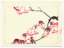 Zeshin Shibata 1807-1891 - Red Maple - Hana Kurabe