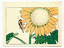 Zeshin Shibata 1807-1891 - Sun Flower and Grasshopper - Hana Kurabe