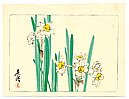 Zeshin Shibata 1807-1891 - White Daffodils  - Hana Kurabe