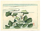 Zeshin Shibata 1807-1891 - Water Plant - Hana Kurabe