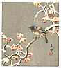 Biho Takahashi 1873-? - Bird on Snow Covered Berry Branch (Muller Collection)
