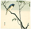 Seiko  active ca. 1890 - 1900 - Blue Bird on a Branch (Muller Collection)