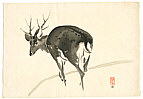 Gakusui Ide 1899-1992 - Stag (Muller Collection)