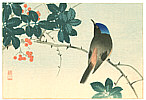 Sozan Ito 1884-? - Blue Head Bird on Nanten Tree