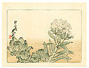 Zeshin Shibata 1807-1891 - Flowering Plant - Hana Kurabe  (First Edition)