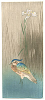 Unknown - Bird and Iris  (Muller Collection)